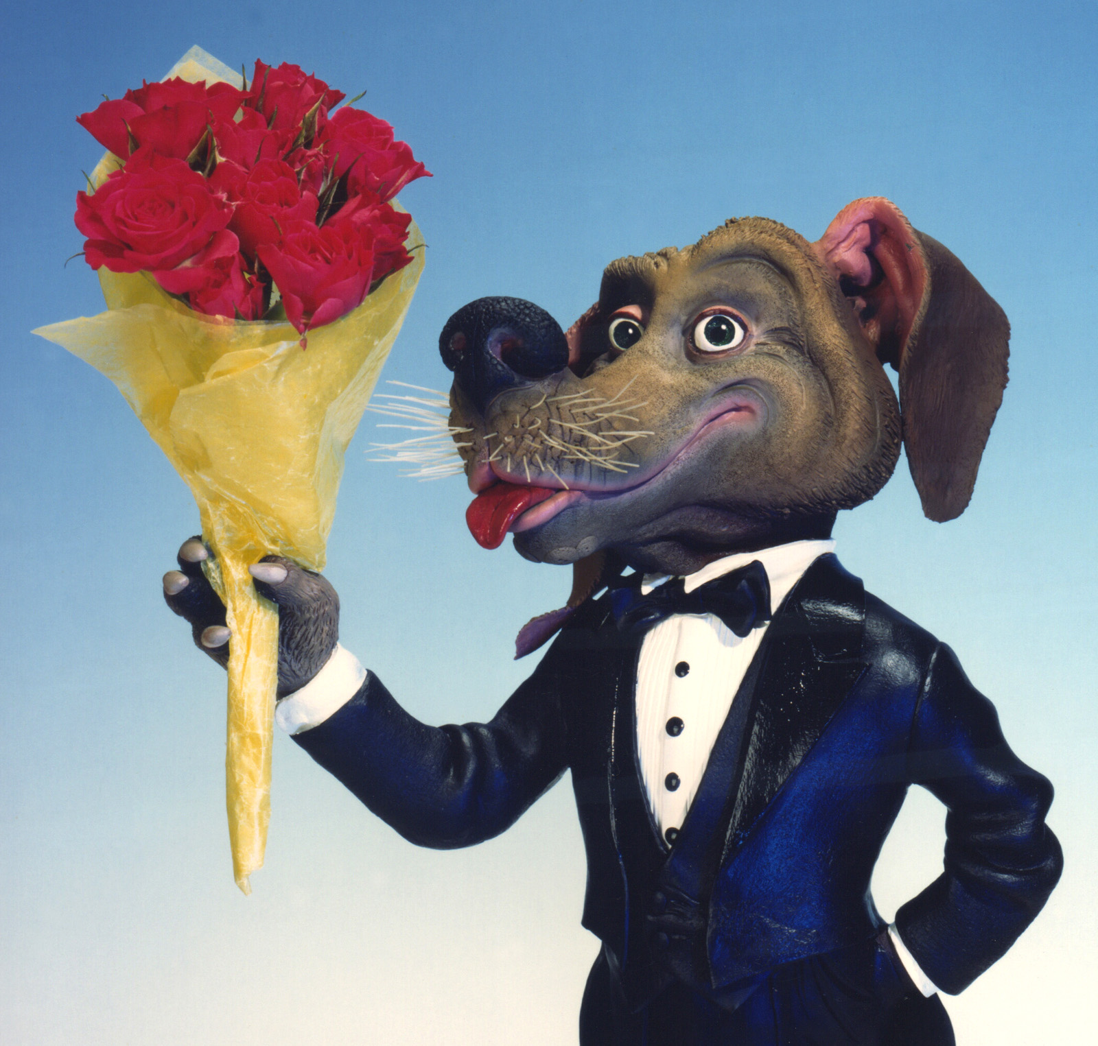 Gingiss Menswear Prom Dog