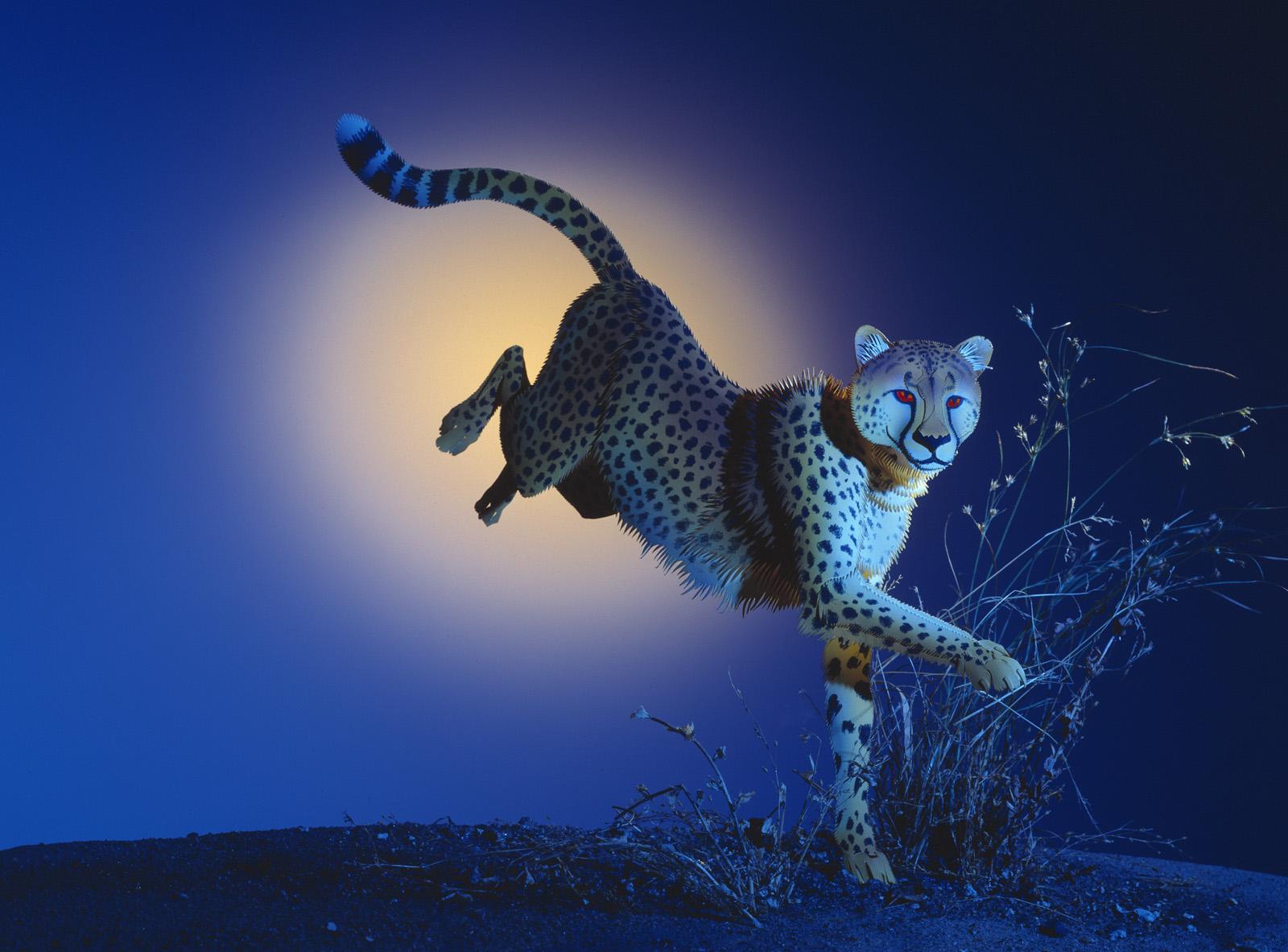 Running Cheetah copy